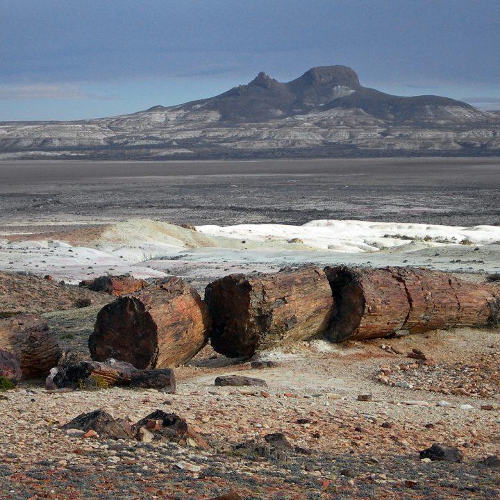 Parque Nacional Bosques Petrificados de Jaramillo
